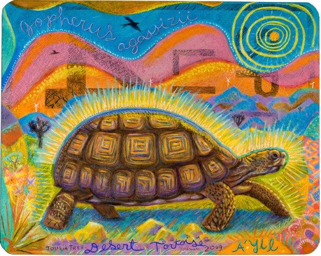 Dianne_Bennett_tortoise_small-