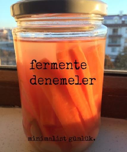 Tüketimden Üretime Geçiş: Fermentedenemeler