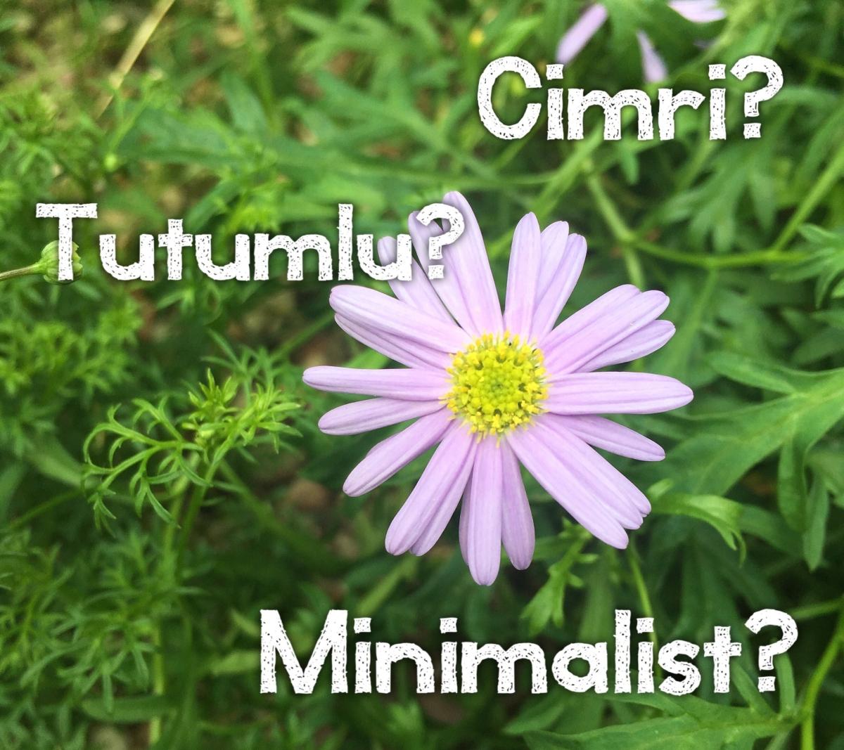 Tutumluluk, Cimrilik ve Minimalizm