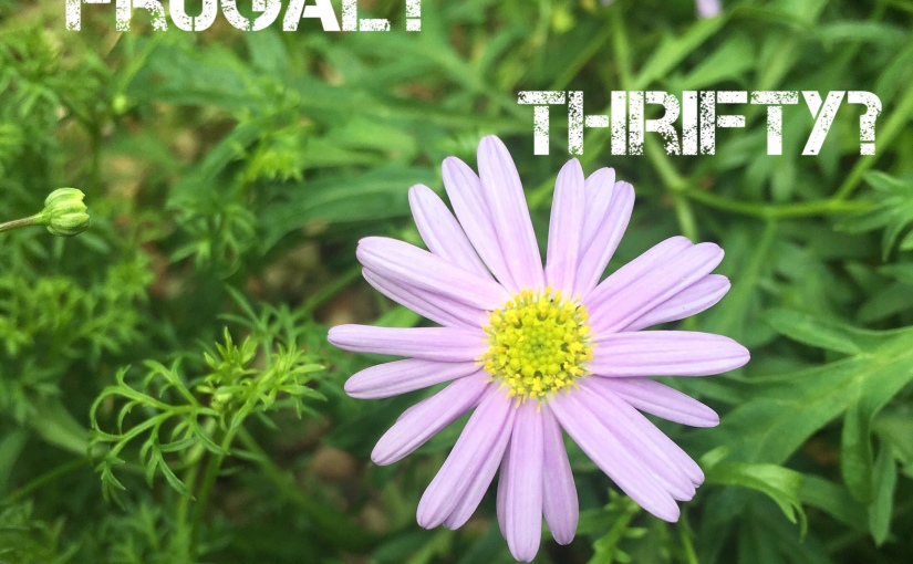 On being Frugal, Thrifty or Minimalist