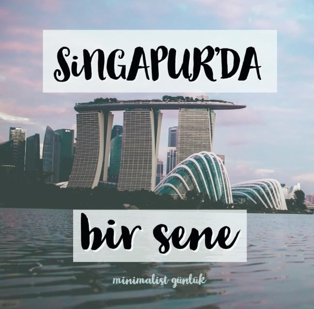 singapurda yaşam singapur rehberi