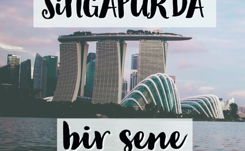 Singapur'da Bir Sene